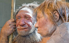 reconstruction of man and woman Neanderthals at Neanderthal Museum in Mettmann, Germany